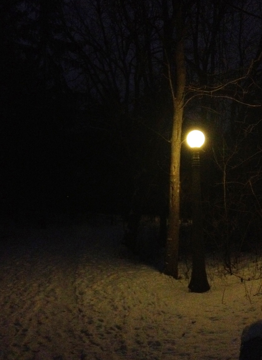 It's starting to look a lot like Narnia, 'round here!