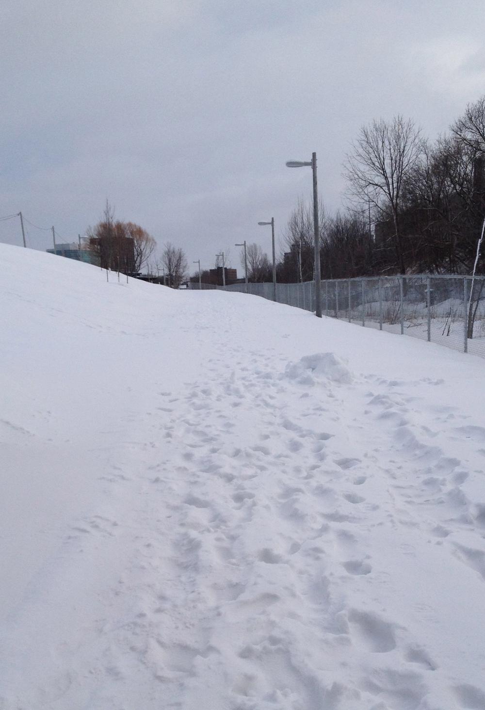 O-Train path in the winter