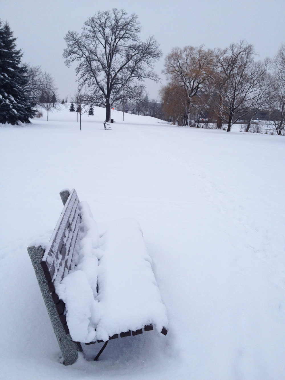 Path through Bordeleau Park