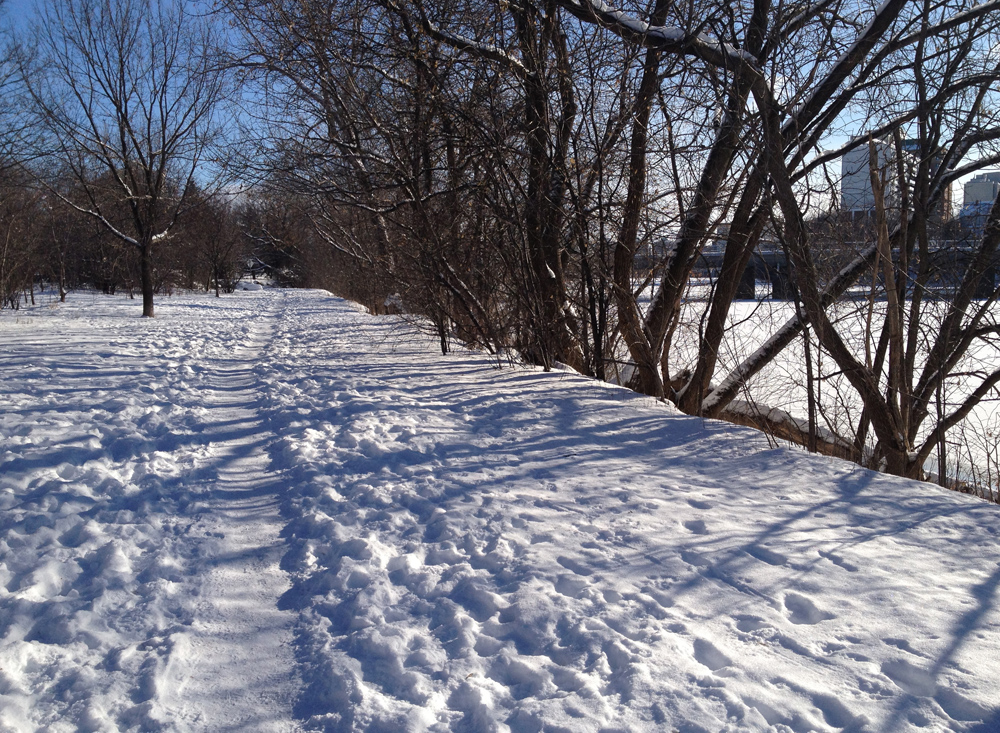 Rideau River Trail in winter