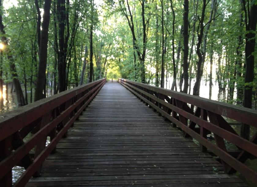Pathway bridge