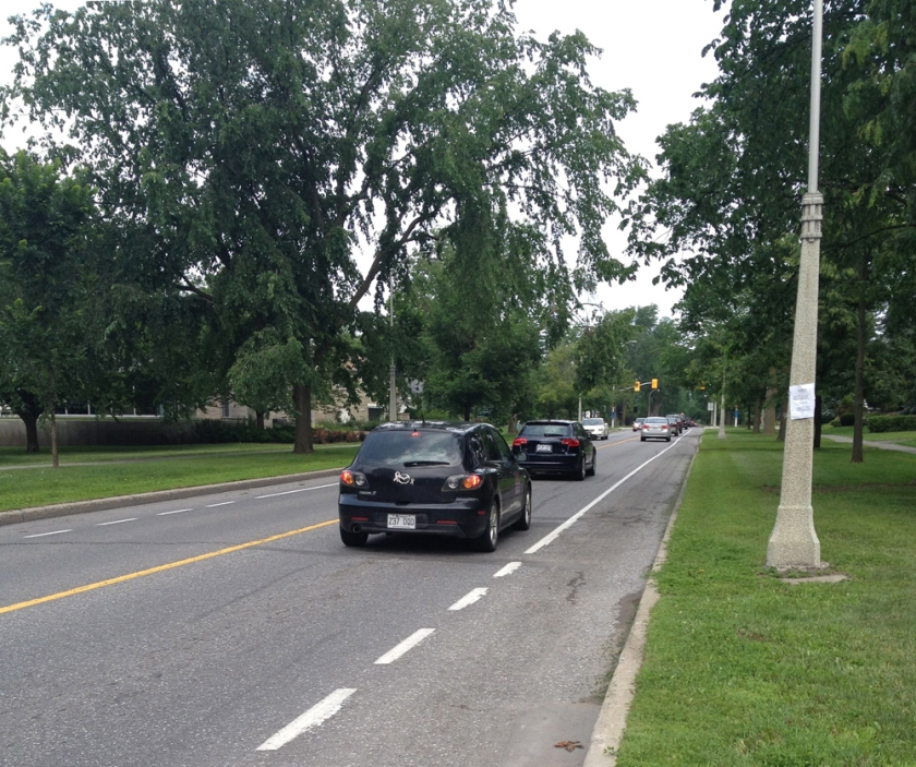 Bike lane along Island Park Drive
