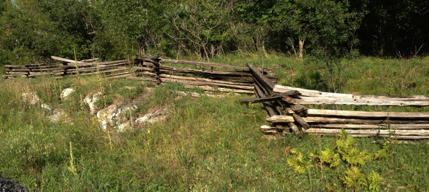 Cedar post fence