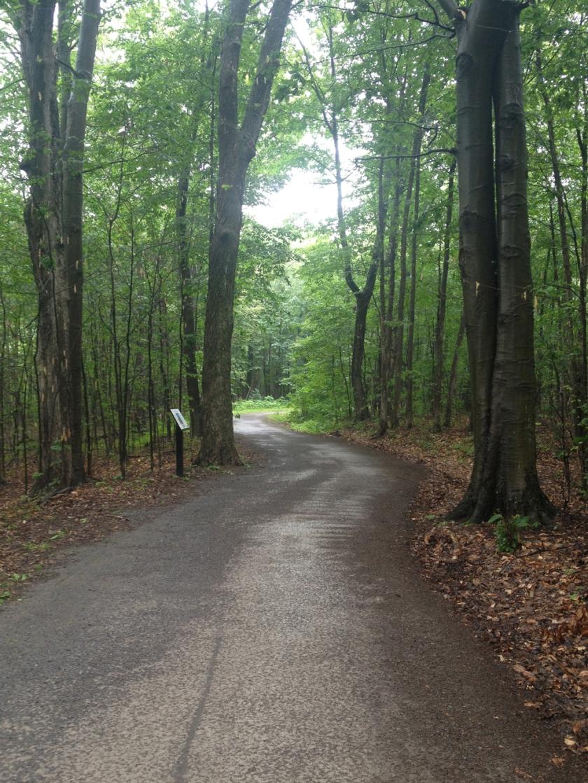 Greenbelt Pathway