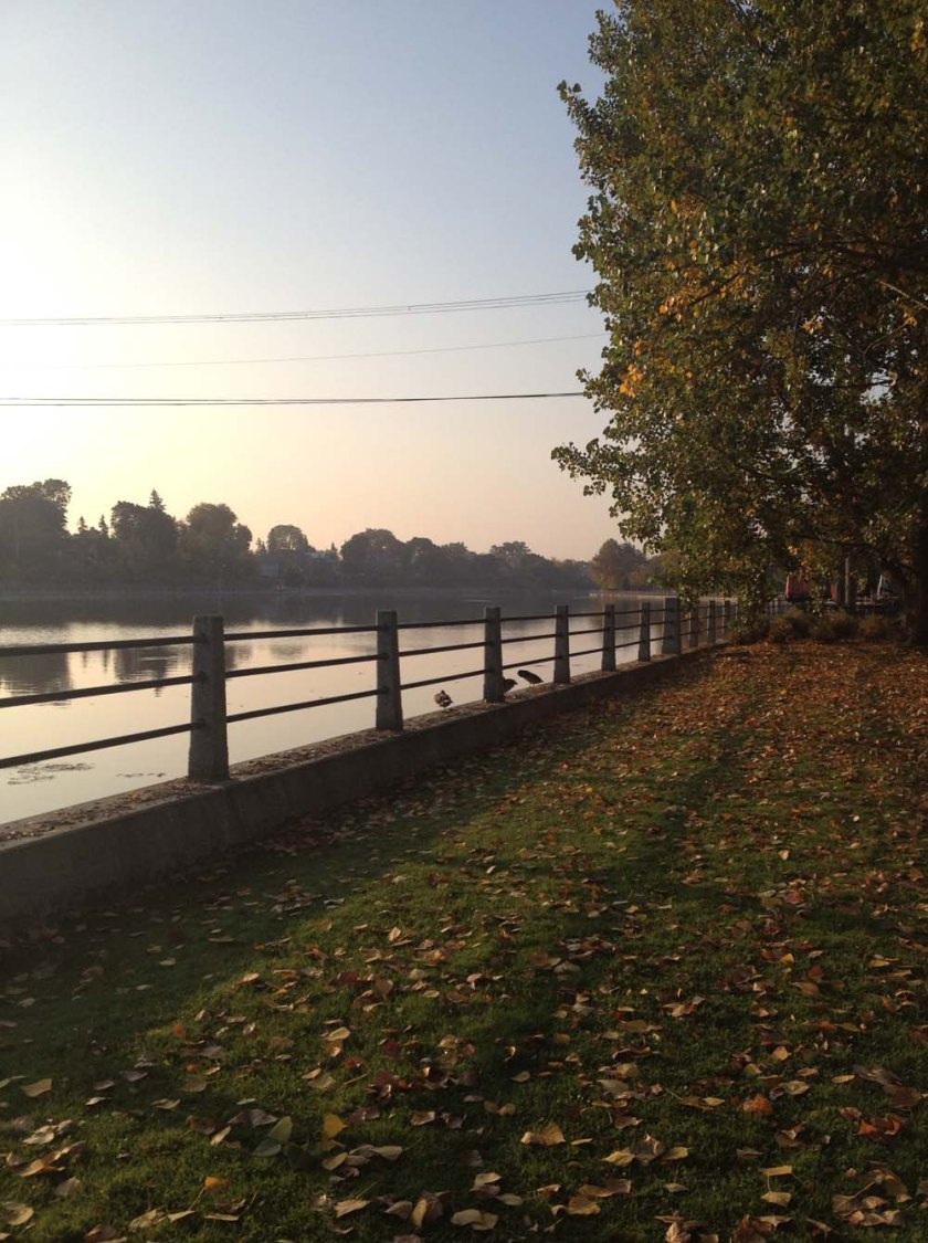 Canal near Landsdowne