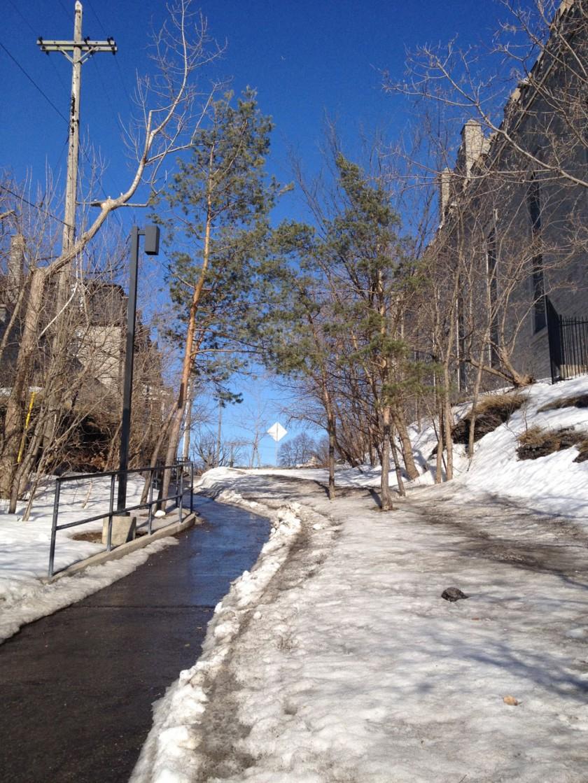 Path up to Primrose