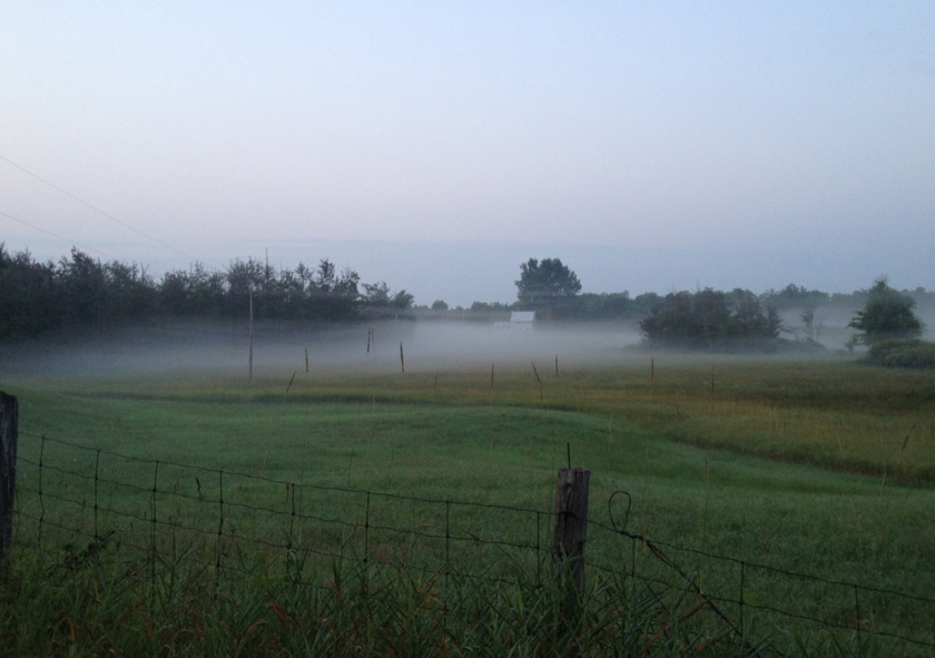 Early morning mist rising on a farmers field near Clarendon