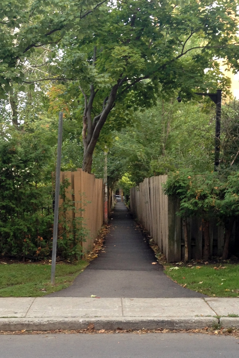 path that joins Wilbrod St to Laurier Ave.