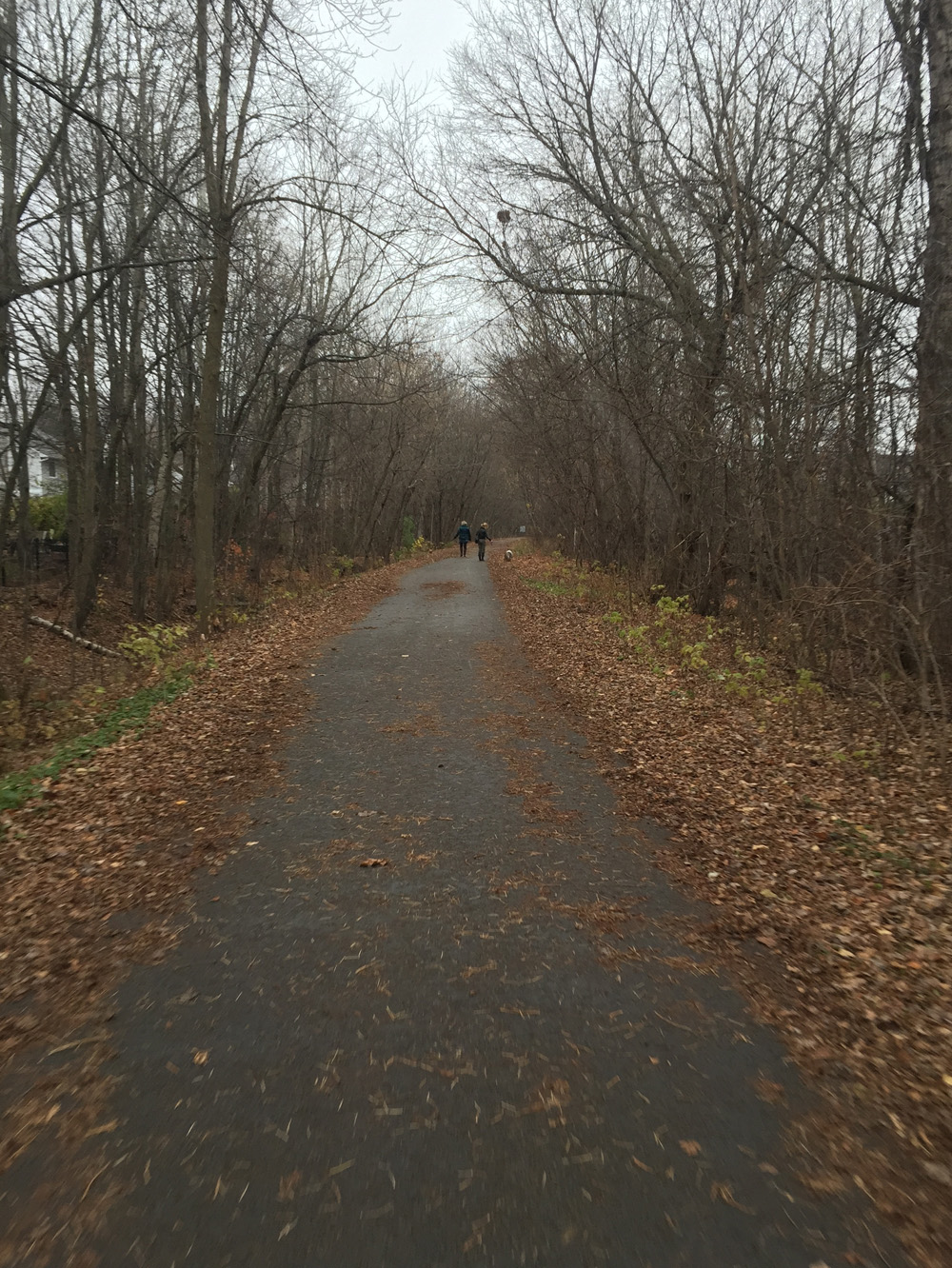 The The New York Central Fitness Trail in the Fall