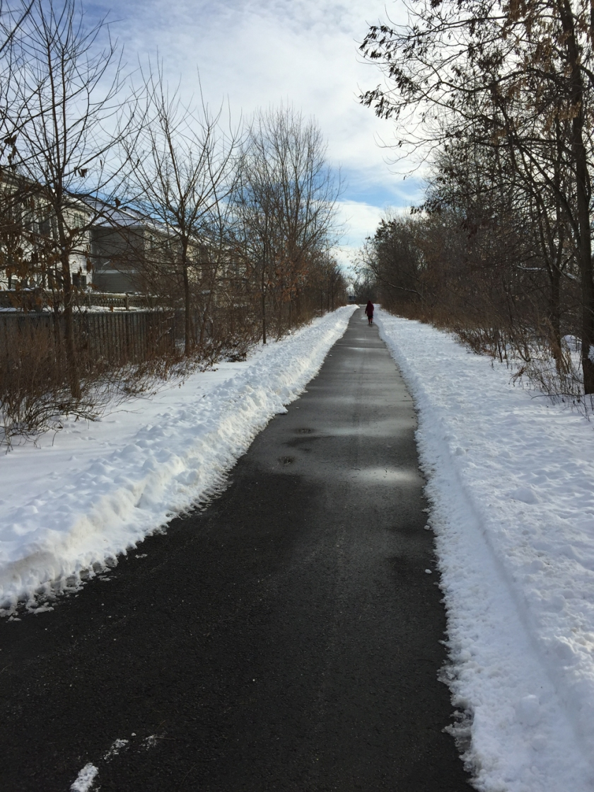 Path between new Barrhaven housing and the Transitway