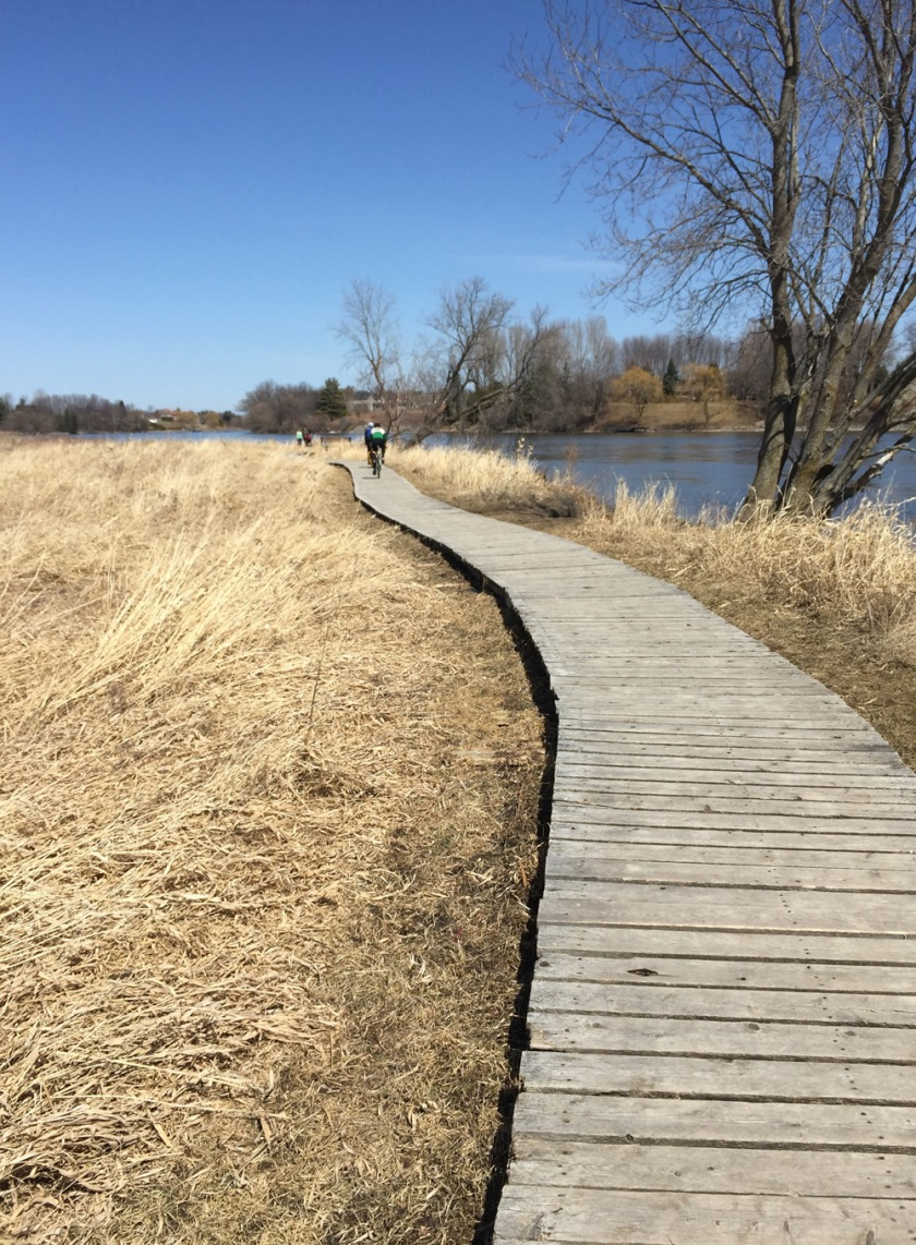 Boardwalk through the Conservation Area
