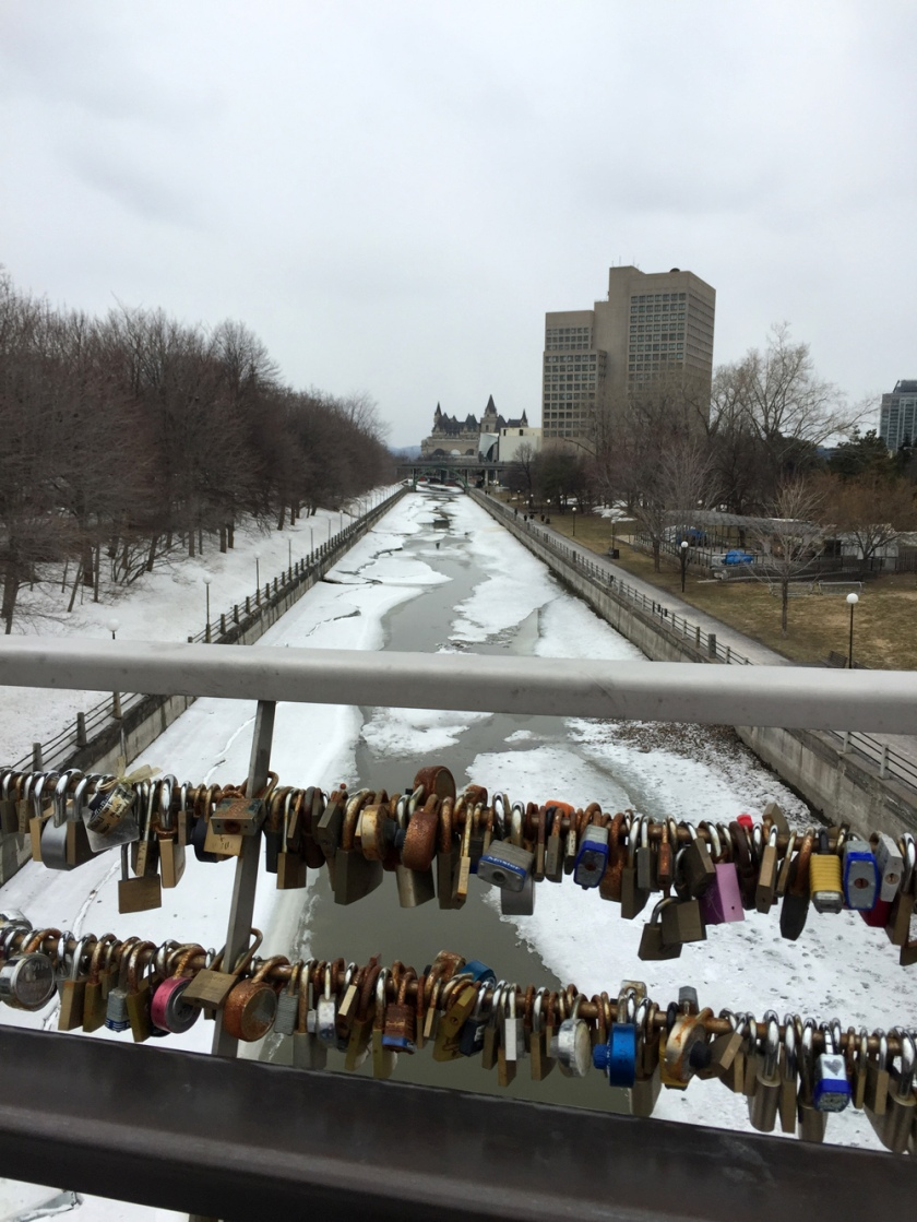 View from the bridge through love locks down the melting Rideau Canal