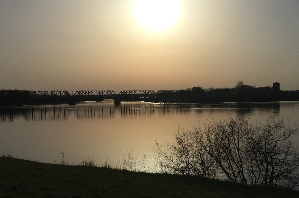 View from the Ottawa River Pathway