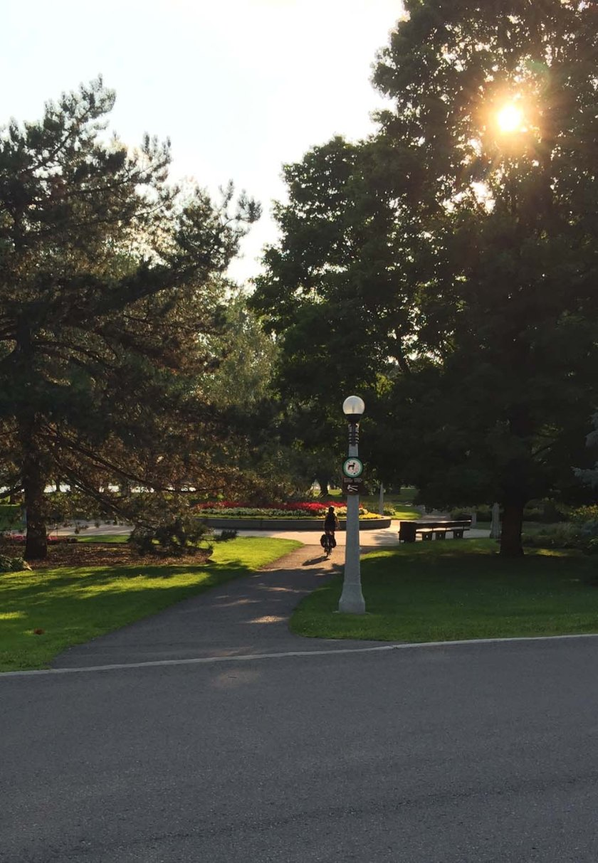 Access to path through Commissioners Park from Madawaska Drive