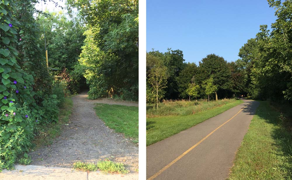 Gravel path off Crichton that leads to.....the Rideau River Pathway