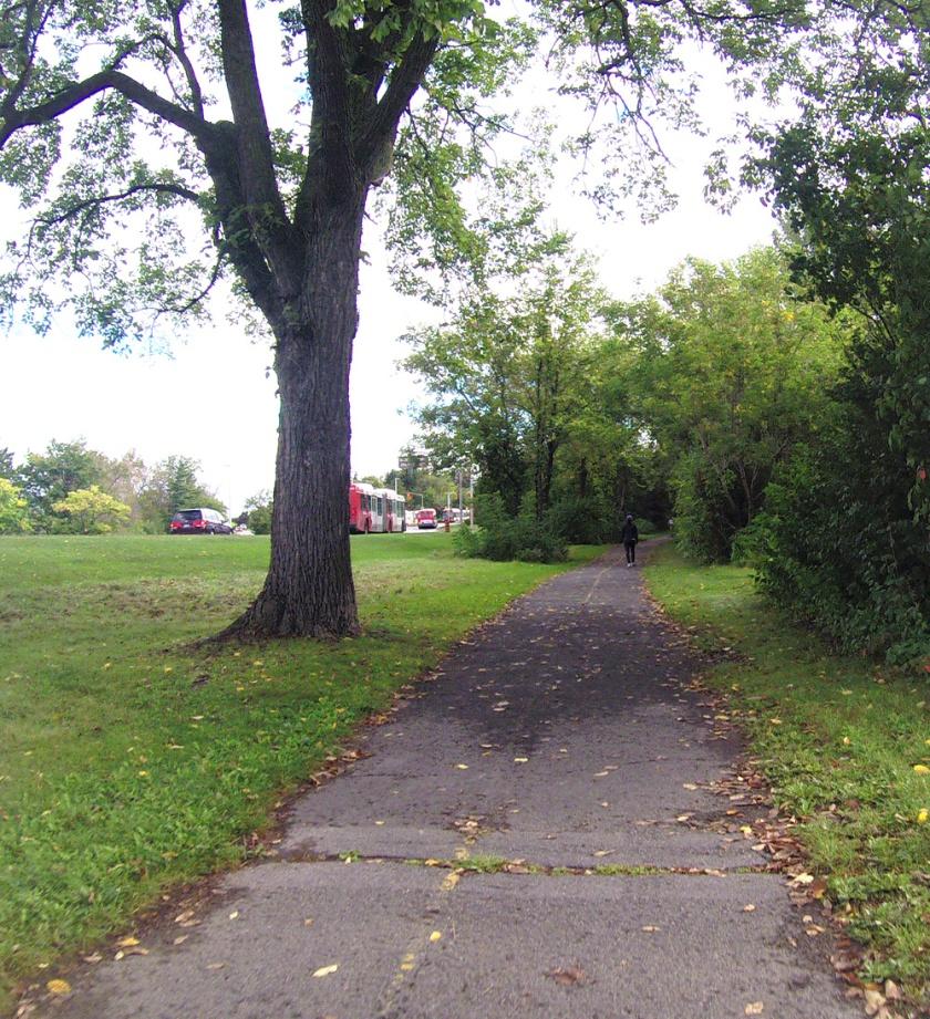 Bumpy path