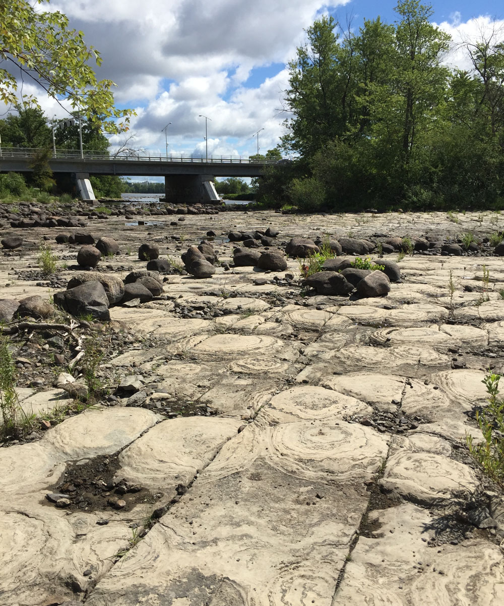 Stromatolites along the edge of the Ottawa River just west of the Champlain Bridge