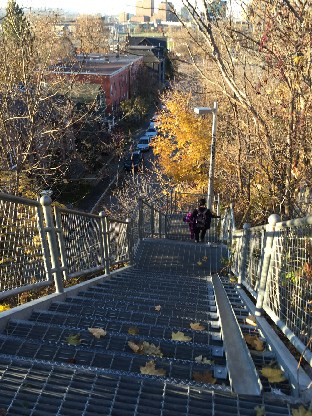 Stairs with bike trough joining upper and lower sections of Empress St