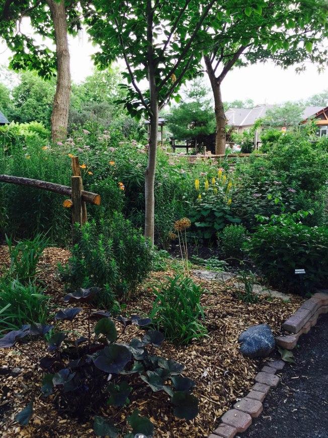 First Unitarian Meditation Garden