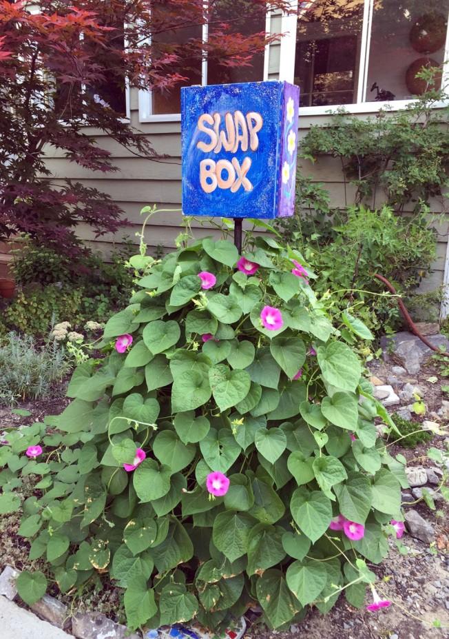 Cambridge St N Swap Box