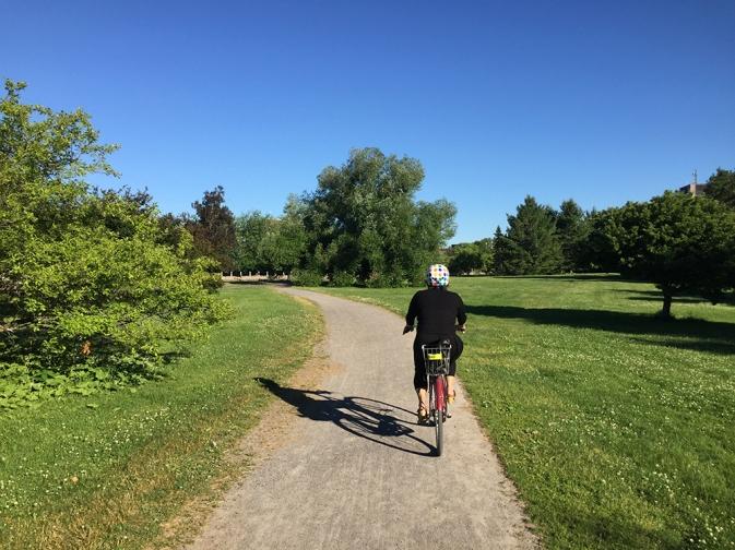 Path through the Arboretum